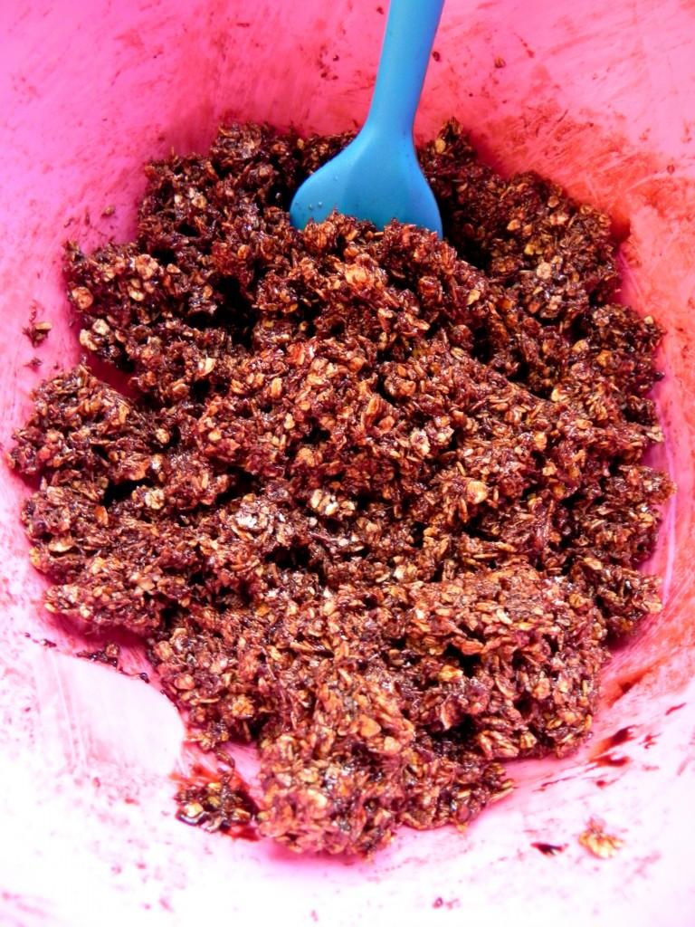 chocolate coconut oat