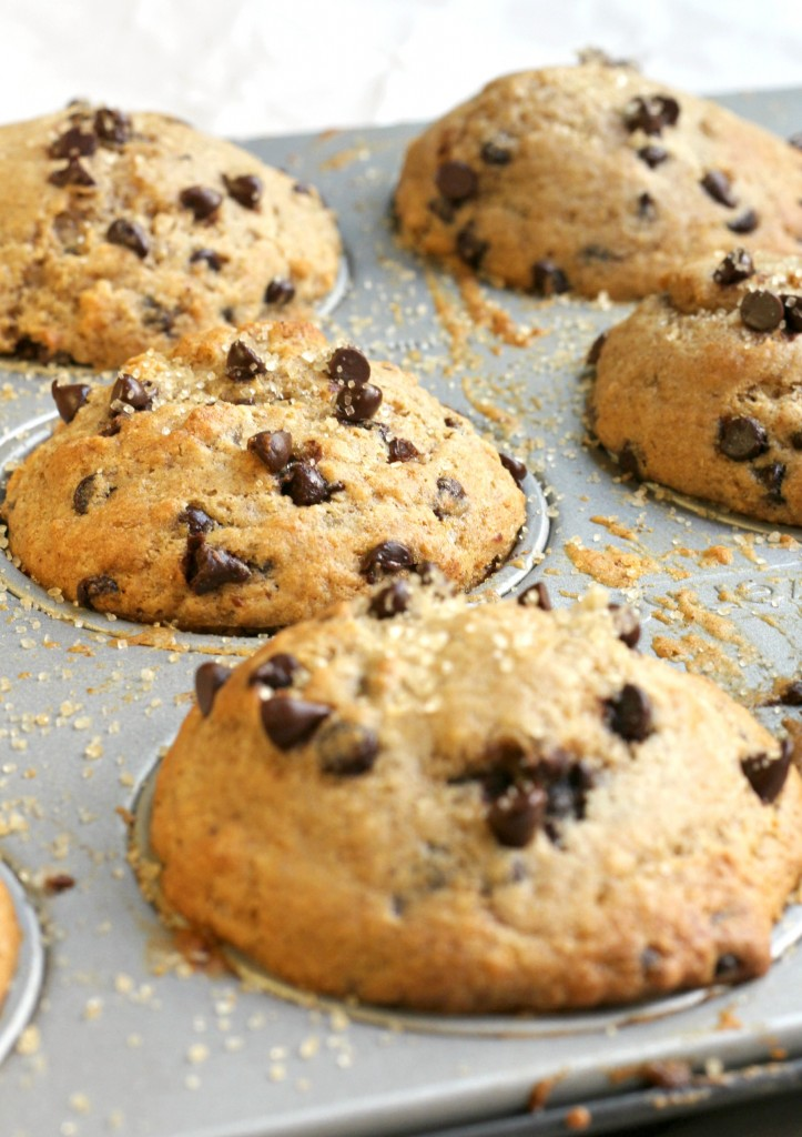 Best Healthy Chocolate Chip Muffins