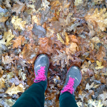 Trails near Bruges in Fall @cearaskitchen #activity
