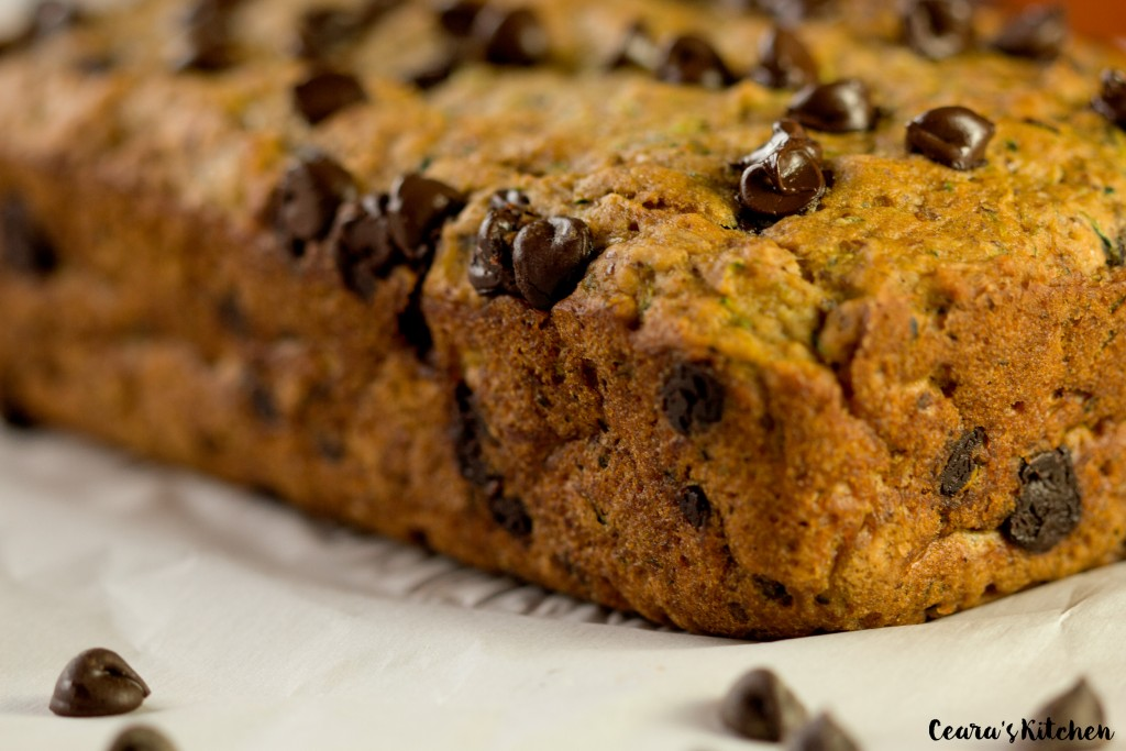 chocolate chip pumpkin